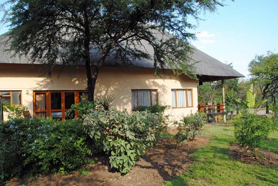 Vakantiehuis Kruger Estate Wild Olive in Zuid Afrika