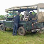Ochtendsafari Krugerpark