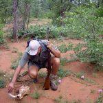 Ranger in het Krugerpark